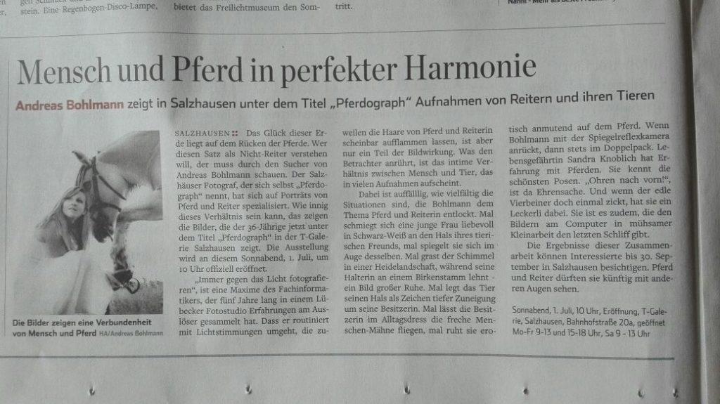 Pferd-O-Graph im Hamburger Abendblatt
